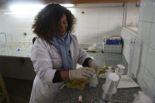Celia Machado en el laboratorio