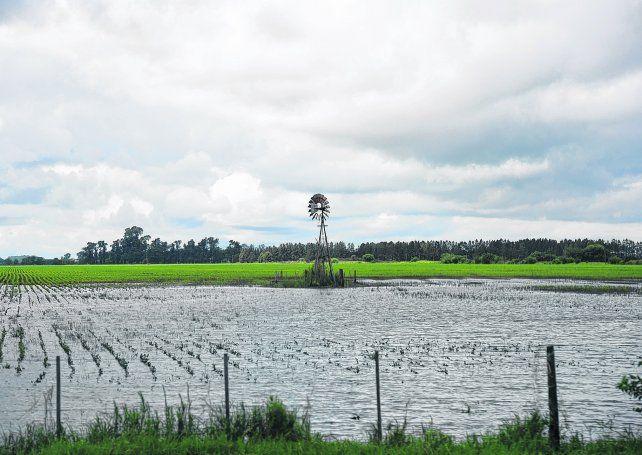clima feroz. Casi 10 millones de hectáreas sufren excesos hídricos. En el Norte