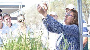 El cooperativismo con agricultores debe mostrar inclusión en todas las áreas.