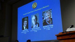 Tres científicos ganaron el Nobel de Medicina por descubrimientos sobre el reloj biológico