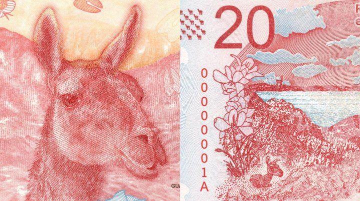 Cambian a Rosas por un guanaco en el billete de veinte pesos