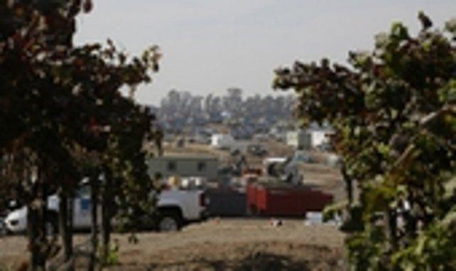 california. Numerosos habitantes regresaron ayer en Napa.