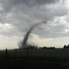 La imagen del mini tornado a campo abierto.