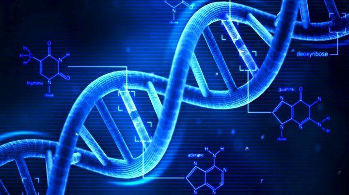 Crearon una máquina molecular para corregir defectos genéticos
