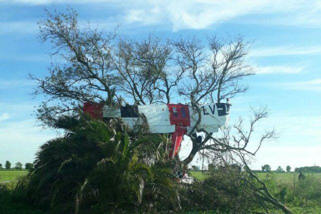 Incrustado en un árbol. Así quedó el Cesna C 150. El piloto falleció.