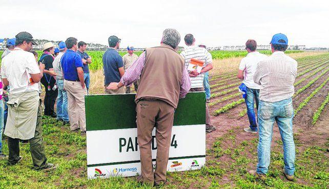 exposición. Monsanto realizó en Pergamino su Jornada de Intercambio Técnico (JIT) para productores y técnicos.