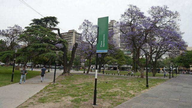 La Municipalidad trabaja en plaza Sarmiento para contrarrestar una colonia de roedores.