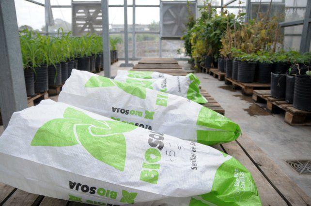 Biotecnología. Bioceres tiene una fuerte presencia en agroinsumos