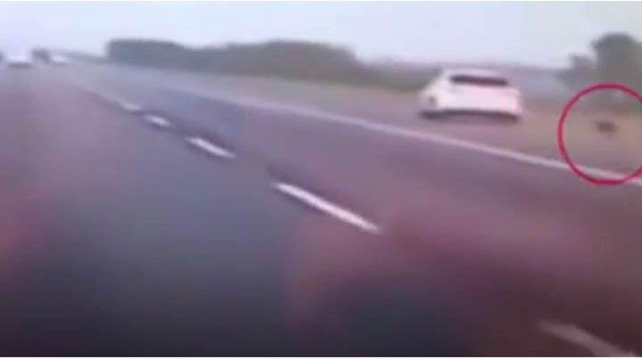Una mujer discutió con su pareja y se tiró del auto en movimiento