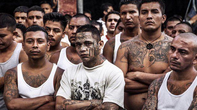 Exponentes. Pandilleros de la banda arraigada en Los Ángeles (EEUU)