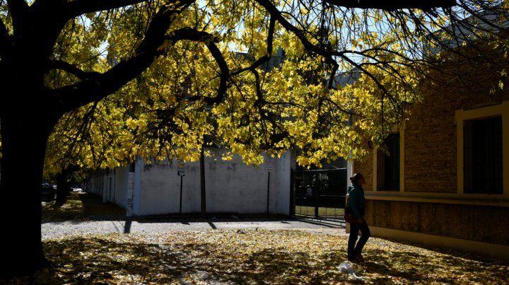 El otoño se siente en la ciudad y los árboles ya cambian de color.