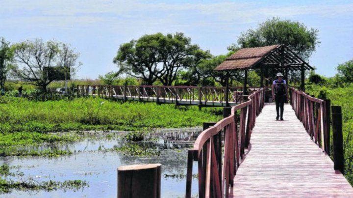 Pasarela. La reserva cuenta con una infraestructura pensada para disfrutar del espacio natural alterando lo menos posible el entorno de lagunas