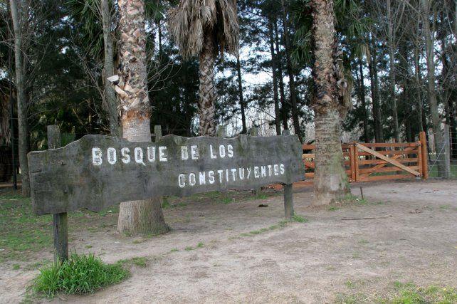 Citan a voluntarios para plantar mil árboles en el Bosque de los Constituyentes
