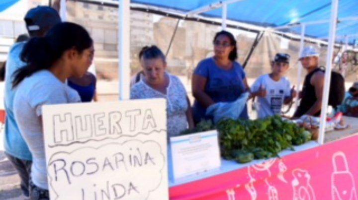 Stand. Los jóvenes exponen su propia producción en la plaza Montenegro.