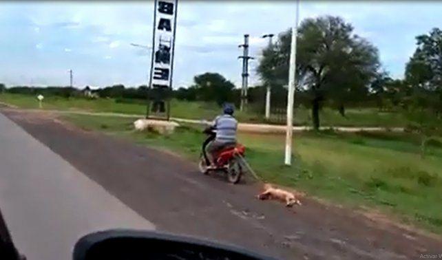 Ató a su perro a la moto y lo arrastró para que aprenda a volver a casa