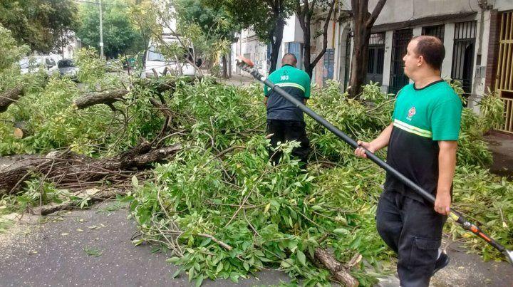 Empleados municipales trabajaban esta mañana en el despeje de calles.