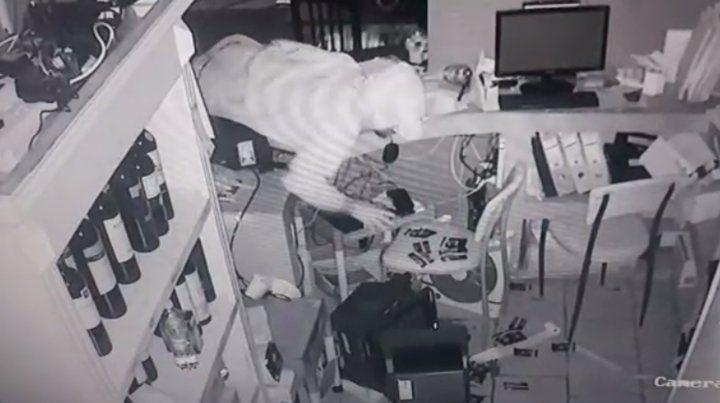 Las cámaras de seguridad de La Rufina sorpendieron al ladrón in fraganti.