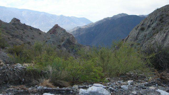 Rescataron a un rosarino que se había accidentado en un cerro en San Juan