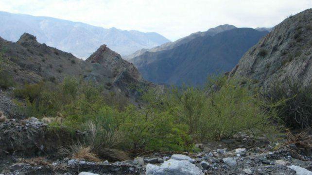 Cerro Pachaco. En la zona de Calingasta