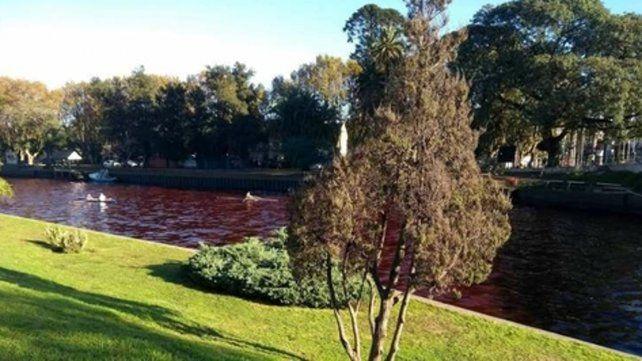 Río rojo. Investigan si el vertido proviene de una industria o un barco.