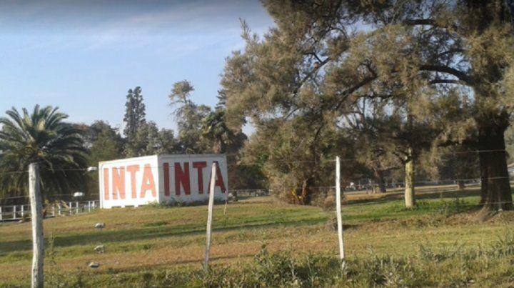 Alertan sobre la posibilidad de 600 despidos en el Inta