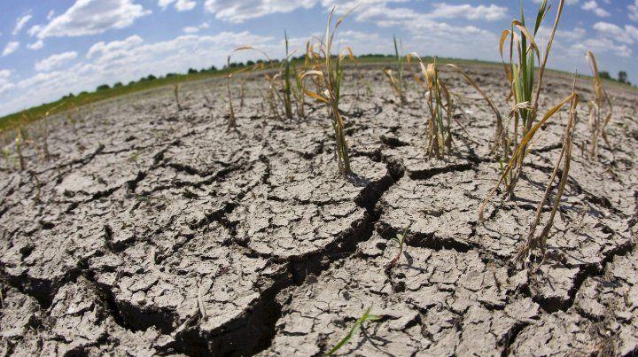 La sequía durante los meses de verano afectó a una gran parte del territorio santafesino.