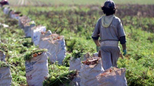 El interés por la mano de obra infantil está en que es más explotable.