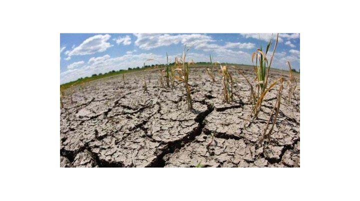 Sequía. El Indec midió una caída del 30