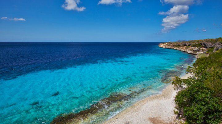 Los colores turquesas del agua son una postal en Bonaire.