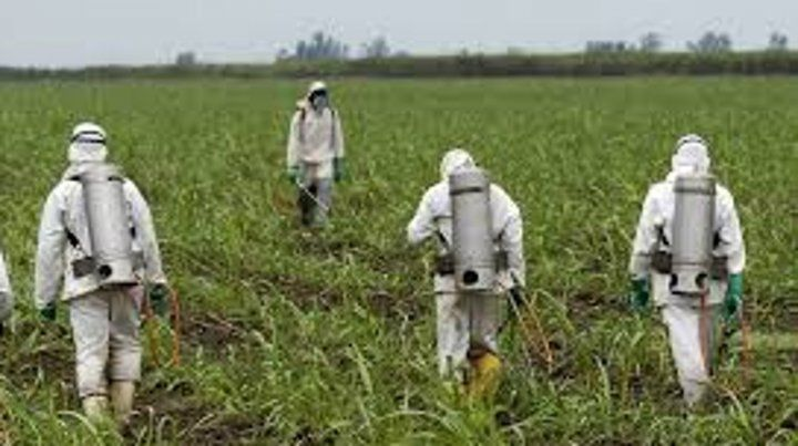 Primer juicio contra un herbicida de Monsanto en EE.UU.