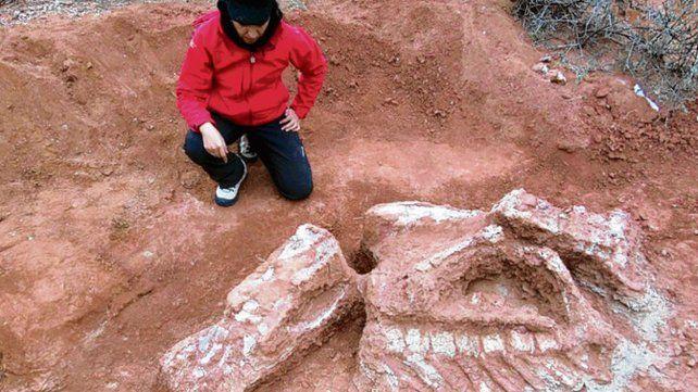 Fantástico. Un científico argentino frente a los huesos de la criatura.
