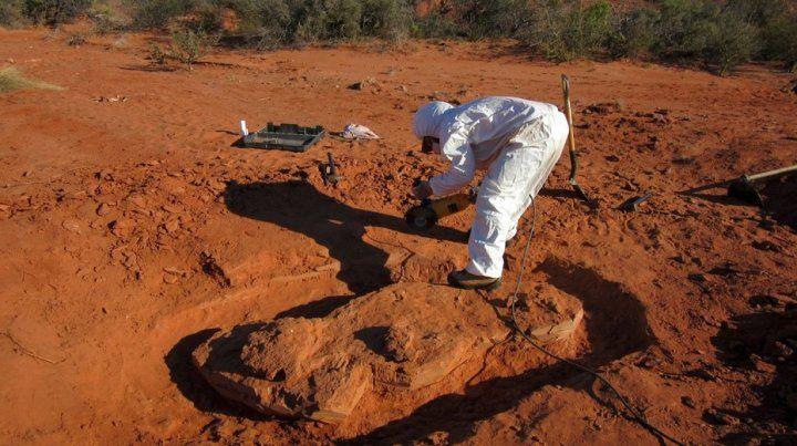 Descubrieron un dinosaurio gigante de más de 200 millones de años