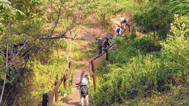 Paseo natural. El sendero es amigable y se sumerge en el bosque en galería