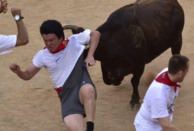 Accidente con suerte. Un toro Miura arrastra a un corredor.