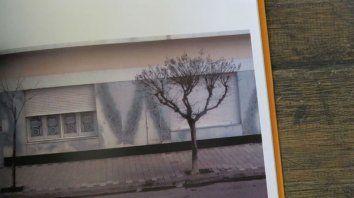 La editorial municipal publicará libros de fotos