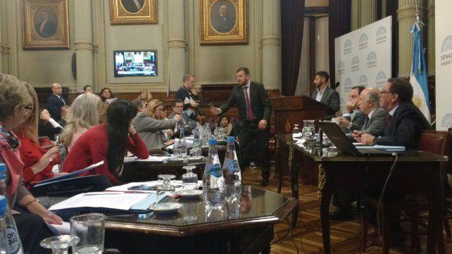 Seguí en vivo el debate por el aborto en el Senado de la Nación