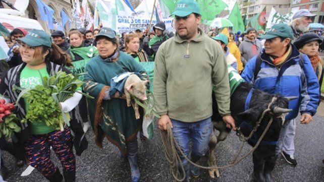 Del campo a la ciudad. Los productores de la agricultura familiar llevaron verduras y animales a Buenos Aires.