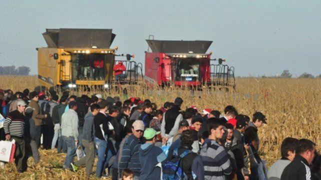 efecto Campo. El agro y la industria vinculada experimentaron una caída a principios de este año.