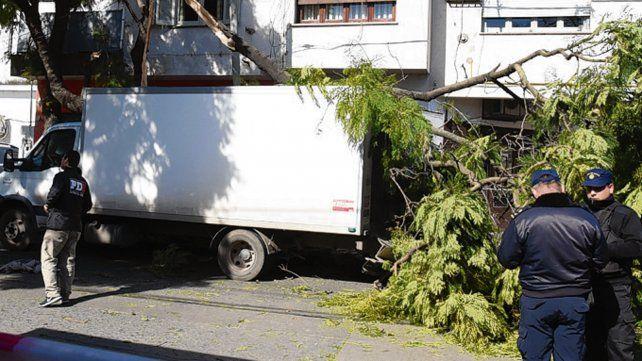 Bajo un árbol. El vehículo robado terminó sobre su escape en la vereda.