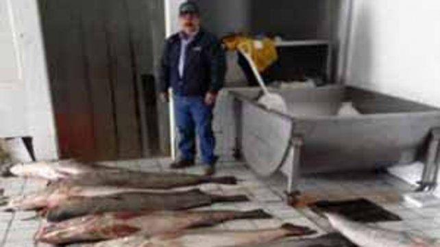 Pescadores furtivos realizan la pesca en la región del golfo de California