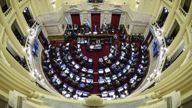 Las fotos de celestes y verdes mientras seguían el debate en el Senado