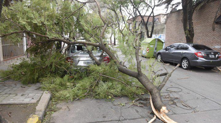 Rige un alerta por vientos fuertes para Rosario y gran parte de la provincia