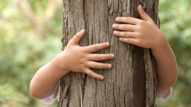 Un día para conectar con la cultura del árbol