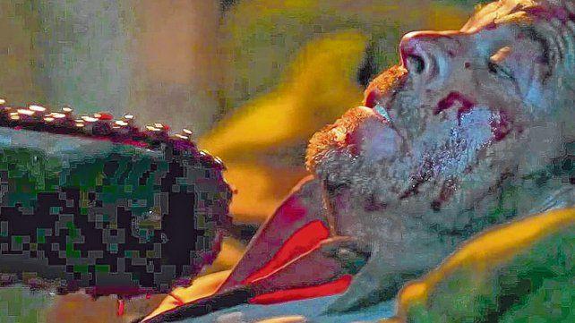 Un viaje complicado. Cinco adolescentes escapan de un hospital psiquiátrico y protagonizan una road movie infernal y sangrienta.