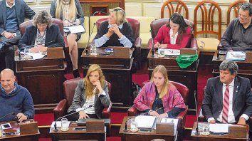 Bancadas. La sesión en la Cámara baja duró casi seis horas, con discursos larguísimos y previsibles.