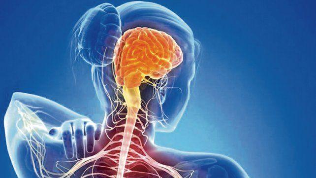 La esclerosis múltiple se da en una proporción de tres mujeres por cada hombre.