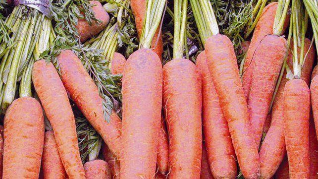 Investigación. La planta piloto utiliza lo que se descarta en la cosecha de zanahoria para generar valor agregado.