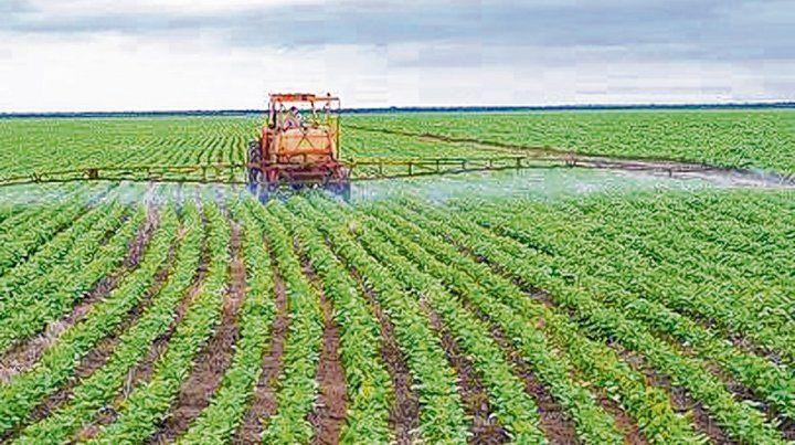 Apenas la mitad de los sojeros fertiliza