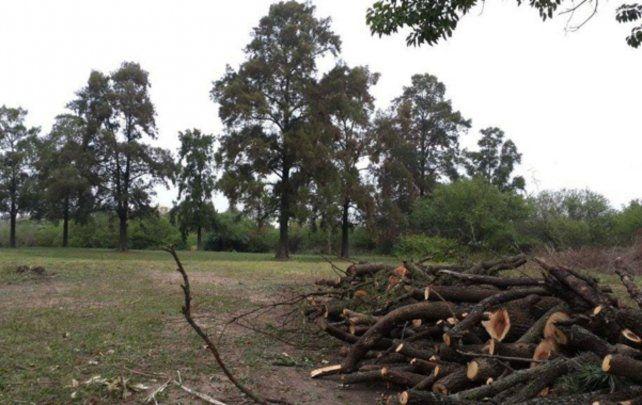 El municipio villagalvense deberá tomar medidas para proteger el espacio verde.
