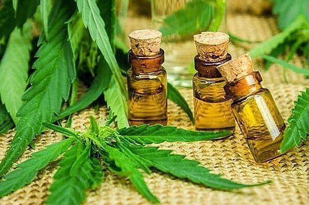 Madres presentaron un amparo colectivo para el autocultivo de cannabis
